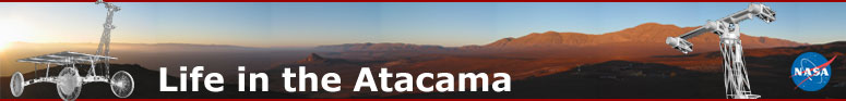 Life in the Atacama Header
